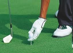 Cỏ sân golf DL 52